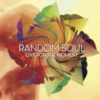 Random Soul - Live For The Moment Album Sampler