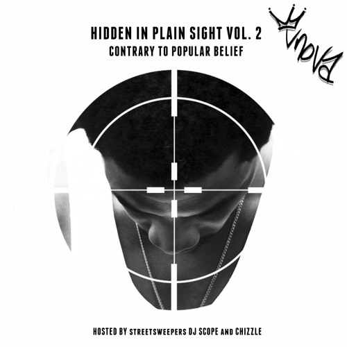 Hidden in Plain Sight Volume 2