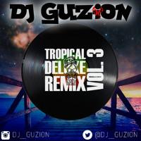 DjGuzion-Tropical Deluxe RmxVol.3