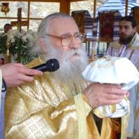 Mărturii despre Preasfințitul Părinte Gherasim Putneanul