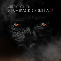 (DIRTY) Sheek Louch Memory Lane