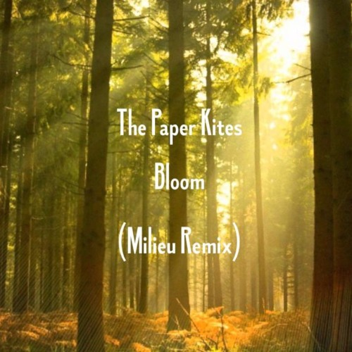 скачать The Paper Kites Bloom